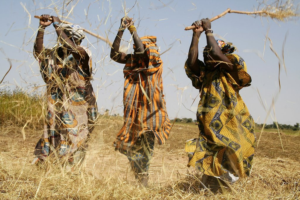 Mali décembre 2008